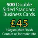 500 Standard Business Cards